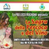 Agenda eventi sagra-della-percoca-e-del-vino-166x166