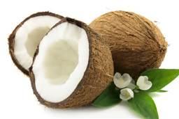Salute e benessere - olio di cocco