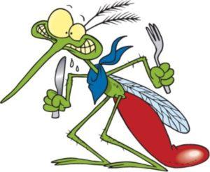 puntura-zanzare[1]